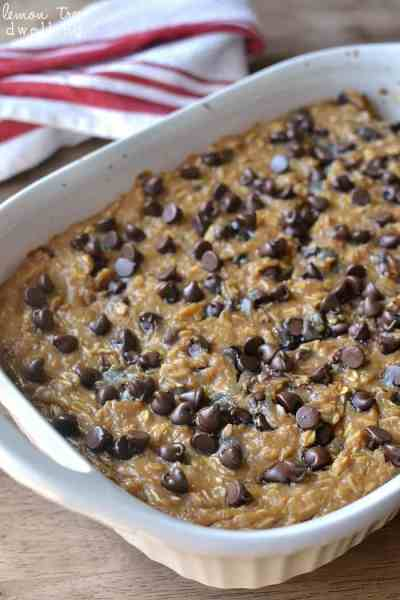 Baked Oatmeal Trailside Treat Bars - The 36th AVENUE