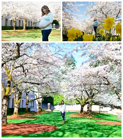 Cherry blossom sessions | Olympia lifestyle photographer ...