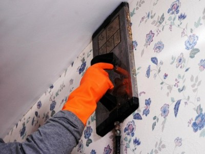 Wallpaper steamer – the easy way to remove old wallpapers