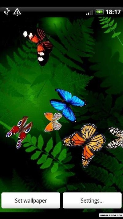 Butterfly Live Wallpaper Free Android App download - Download the Free Butterfly Live Wallpaper ...