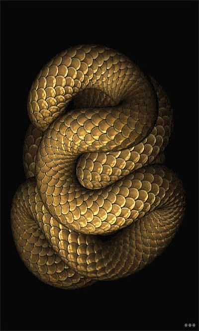 Snake Live Wallpaper Free Android Live Wallpaper download - Download the Free Snake Live ...