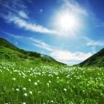 Seguir las leyes de la Naturaleza para estar Sanos