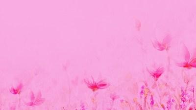 HD Light Pink Backgrounds | PixelsTalk.Net
