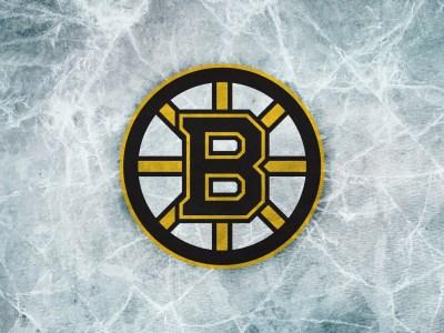 Boston Bruins Logo HD Wallpapers. | PixelsTalk.Net