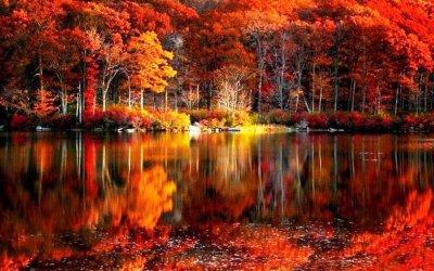 HD Fall Scenery Wallpapers | PixelsTalk.Net