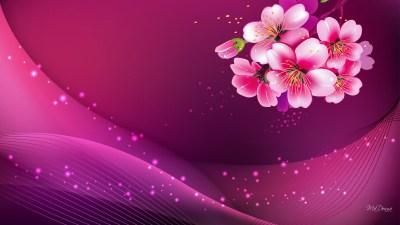 Dark Pink Wallpapers HD | PixelsTalk.Net