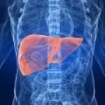 Cáncer hepático, su diagnóstico según la MTC y su tratamiento basado en la Fitoterapia China