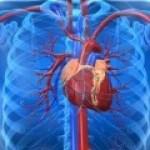 Estudio comparativo del tratamiento del fallo cardiaco debido a la insuficiencia diastólica del ventrículo izquierdo