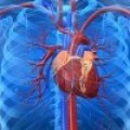 Cardiopatía Coronaria en la Postmenopausia tratada con Yang Huo San Zi Tang