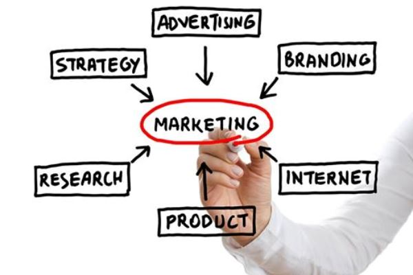 Guía para principiantes en el mundo del marketing