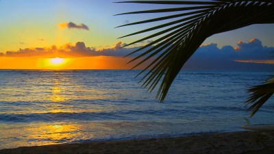 SEE The Most Beautiful Hawaii Beaches Photos from our new HD Video DVD & Blu Ray: The #1 Nature ...
