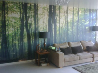 mural wallcovering 2017 - Grasscloth Wallpaper