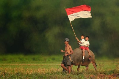 14 OMG Facts About Indonesia: Funny, Interesting and Weird ...