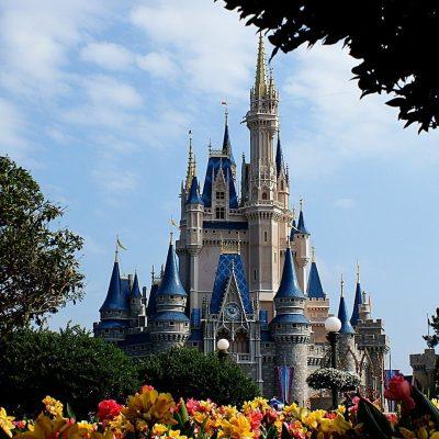 10 Latest Disney World Castle Wallpaper FULL HD 1080p For PC Background