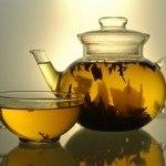 Stevia o Estevia: la planta que endulzara tu salud