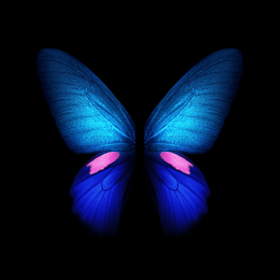 You can download the Live Wallpapers from the Galaxy Fold right here - SamMobile
