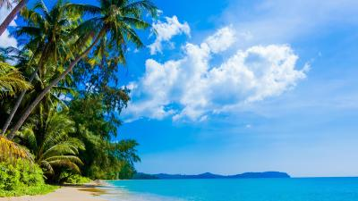 Sunny day on the beach HD Wallpaper Download 5120x2880