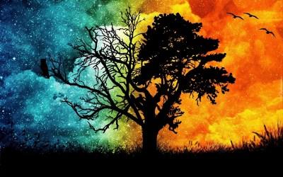 Drzewo, Ptaki, Ogień, Woda, Abstrakcja