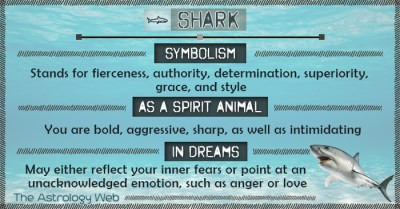 Shark Meaning and Symbolism | The Astrology Web