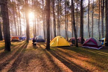 iPhone Apps for Camping and the Great Outdoors  Camping