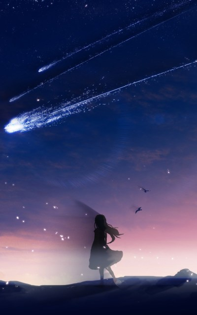 Download 800x1280 Anime Girl, Falling Stars, Scenic, Birds, Sky, Landscape Wallpapers for Galaxy ...