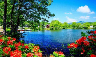 Beautiful Nature Scenery Wallpapers Beautiful Scenery Wallpaper Desktop Wallpapers Hd ...