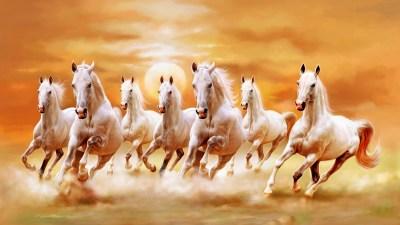 Beautiful White Horses Galloping Orange Sunset Sky Ultra Hd Wallpaper : Wallpapers13.com
