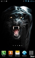 Download Black Panther Live Wallpaper Gallery