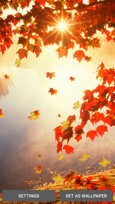 Download Falling Leaves Live Wallpaper Download Gallery