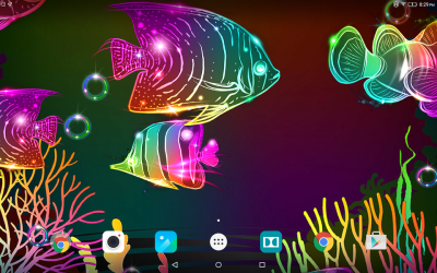 Download Fish Touch Live Wallpaper Gallery