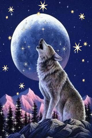 Download Free Wolf Live Wallpaper Gallery