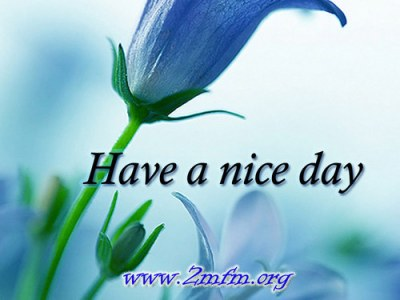 Download Have A Nice Day HD Wallpaper Gallery