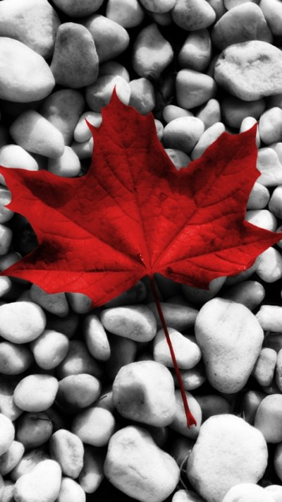 Download Iphone Wallpaper Canada Gallery