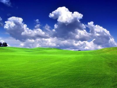 Download Live Nature HD Wallpaper Gallery