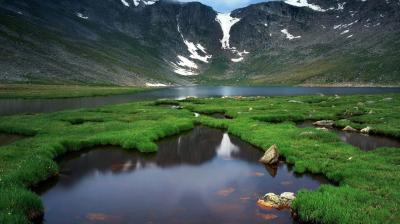 Download Live Nature Wallpaper Gallery