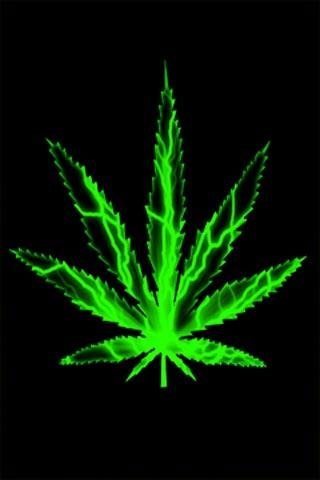 Download Live Weed Wallpaper Gallery