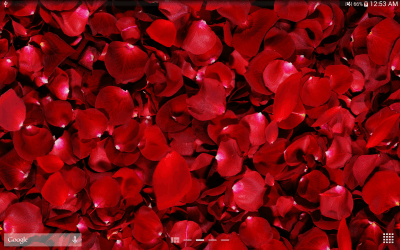 Download Red Rose Live Wallpaper Free Download Gallery