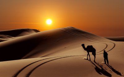 Sun people desert camel wallpaper | 8014x5000 | 559825 | WallpaperUP
