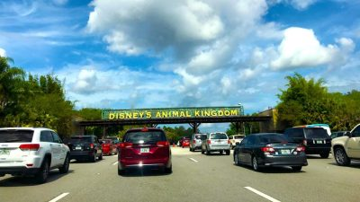 What you Need to Know About Parking at Disney World • WDW Vacation Tips