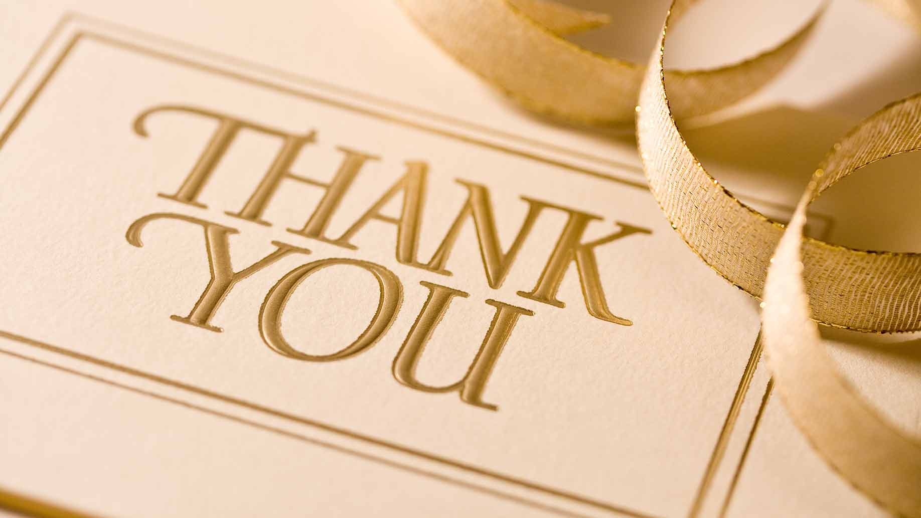 wedding thank you cards cost ideas prices thank you cards wedding How Much Do Wedding Thank You Cards Cost Ideas Prices