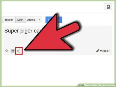 4 Ways to Use Google Translate - wikiHow