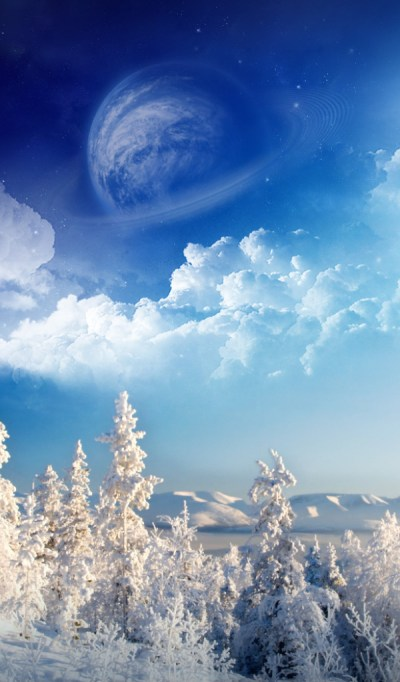 Winter wonderland Desktop wallpapers 600x1024