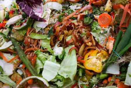Problems With Organic Waste
