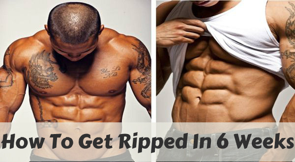 How To Get Ripped Fast In 6 Weeks Fat Guys Lose Fat