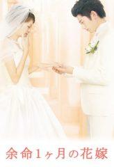 Nonton Film April Bride (2009) Sub Indo Download Movie Online DRAMA21 LK21 IDTUBE INDOXXI