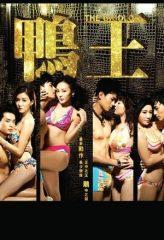 Nonton Film The Gigolo (2015) Sub Indo Download Movie Online SHAREDUALIMA LK21 IDTUBE INDOXXI