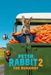 Nonton Film Peter Rabbit 2: The Runaway (2021) Sub Indo Download Movie Online DRAMA21 LK21 IDTUBE INDOXXI
