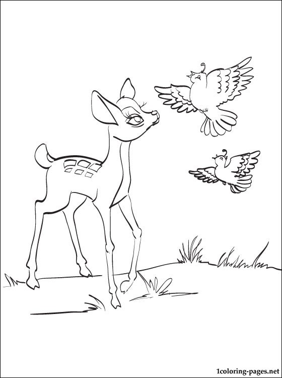 Bambi partridges pencil drawing coloring, love bird coloring pages