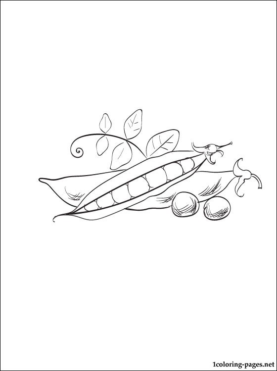 sweet pea coloring pages # 35