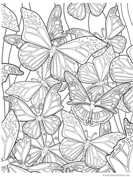 butterfly coloring pages for adults # 20
